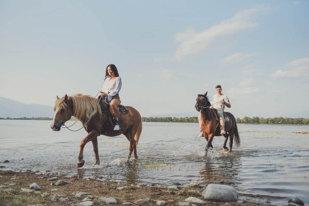Horse ride on Lake Kerkini
